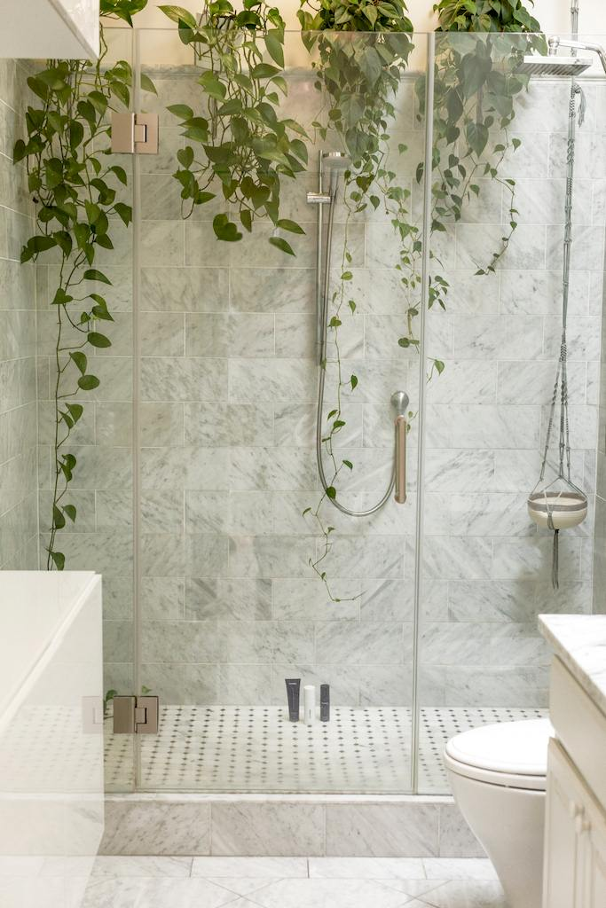 image - Glass-Enclosed Showers are Better than Curtains