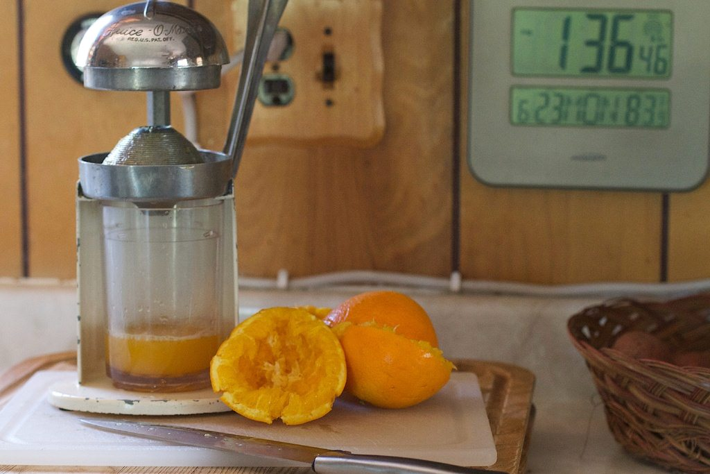 image - What to Look for When Purchasing the Best Citrus Juicer