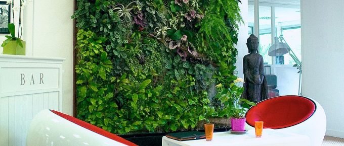 Vertical Gardens and Human Health: How Are They Related?