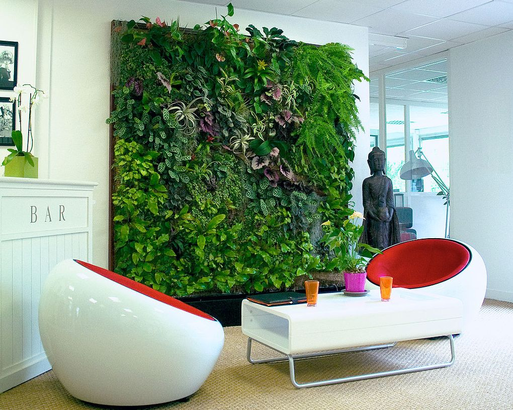 image - Vertical Gardens and Human Health: How Are They Related?