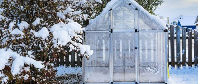 5 Reasons You Should Have an Aluminium Greenhouse in Your Backyard