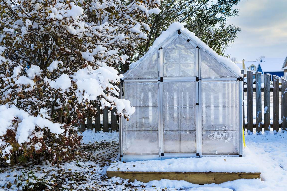 image - 5 Reasons You Should Have an Aluminium Greenhouse in Your Backyard