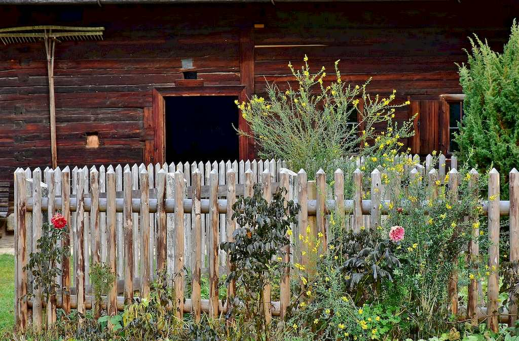 image - The Importance of Fencing in Your Garden