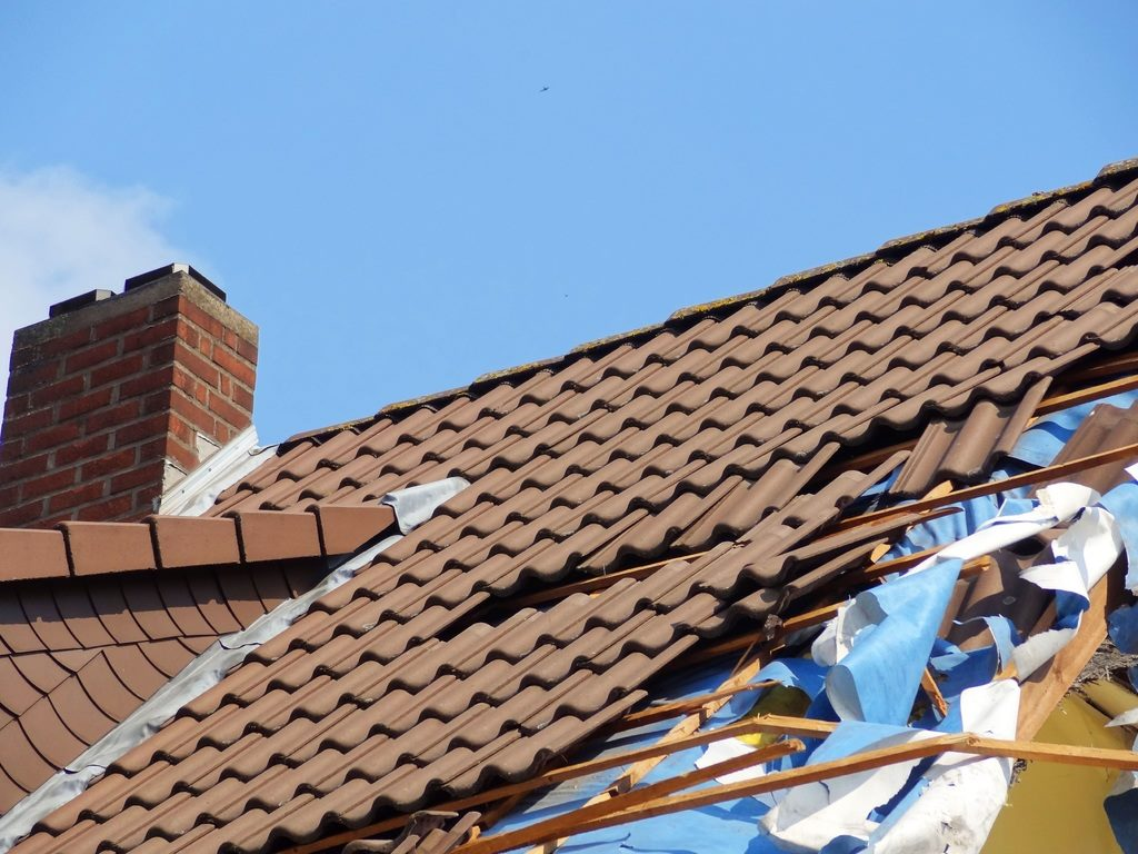 image - Things That Can Damage Your Roof