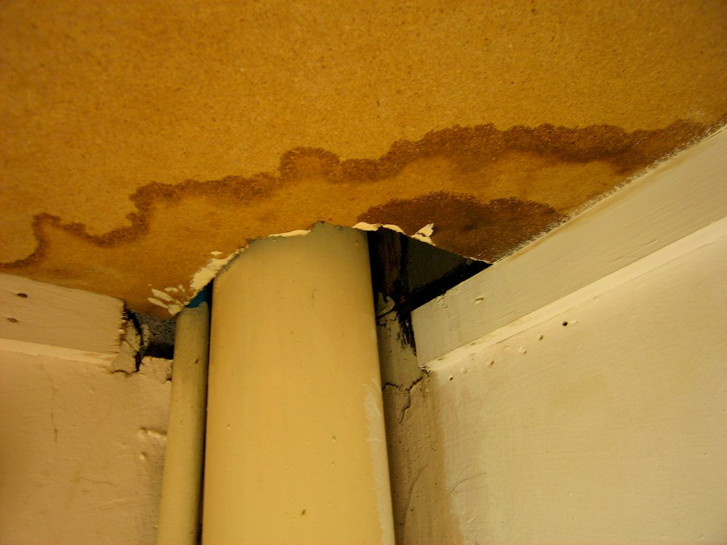 image - What to Do After Water Leak Has Been Detected