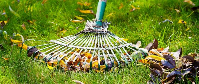 10 Crucial Lawn Care Tasks for Fall