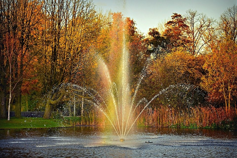 image - 5 Top Benefits of Installing Pond Fountains