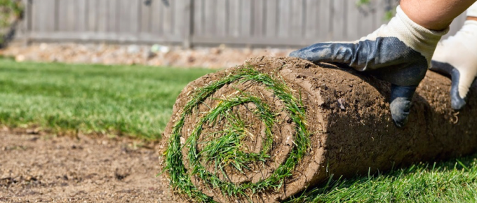 7 Benefits of Sod Lawn Installation With Mr Lawn In Surrey