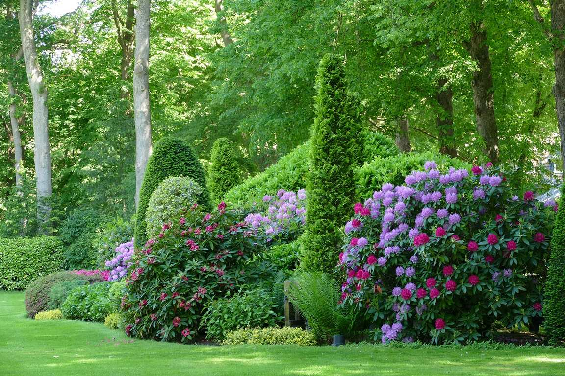 image - How to Choose the Best Border and Edging Plants for Your Landscape