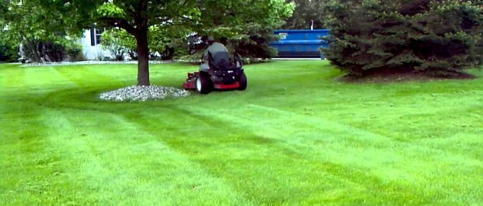 Tips from Yukon Companies about Uncommon Lawn Maintenance Issues