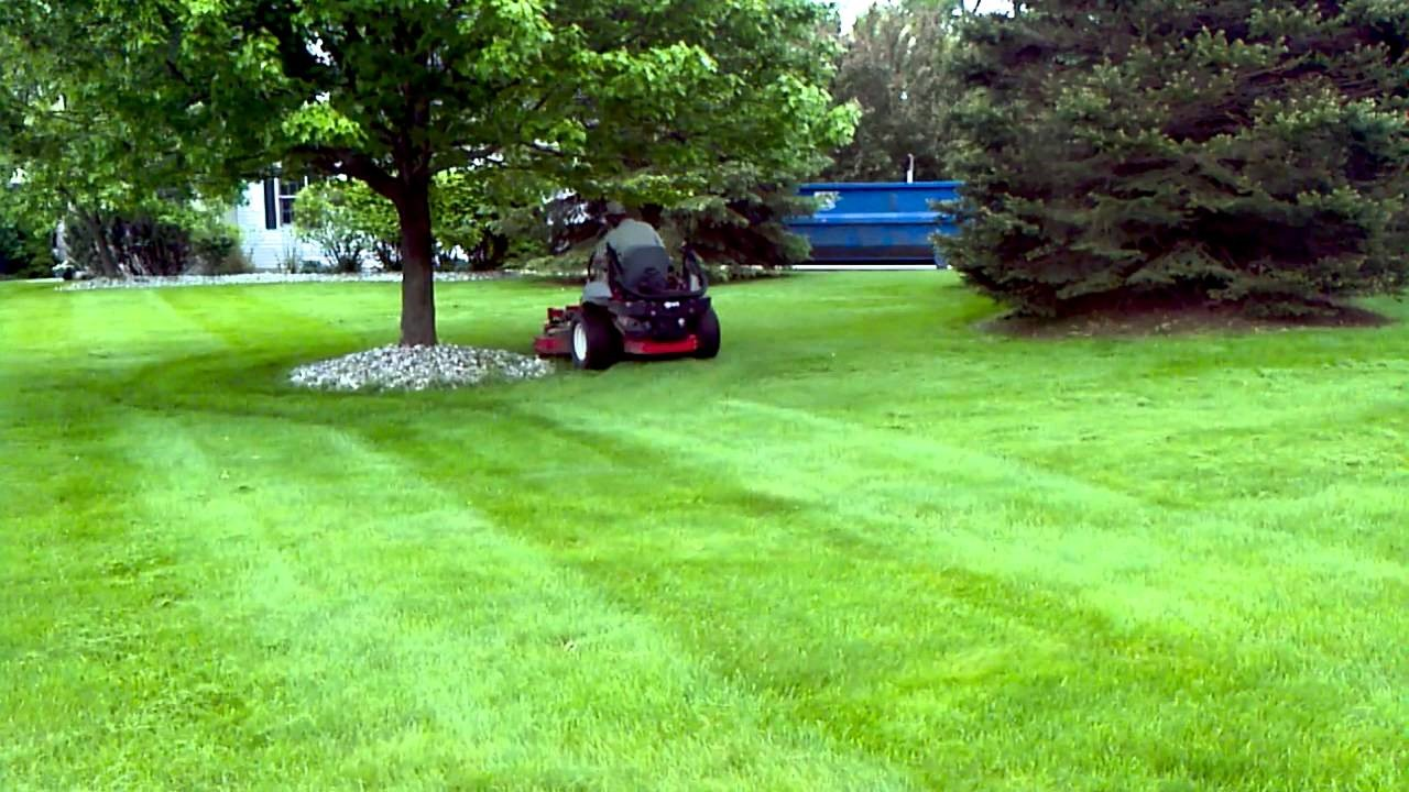 image - Tips from Yukon Companies about Uncommon Lawn Maintenance Issues