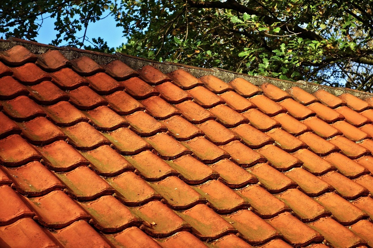 image - 5 Major Enemies of Your Roof