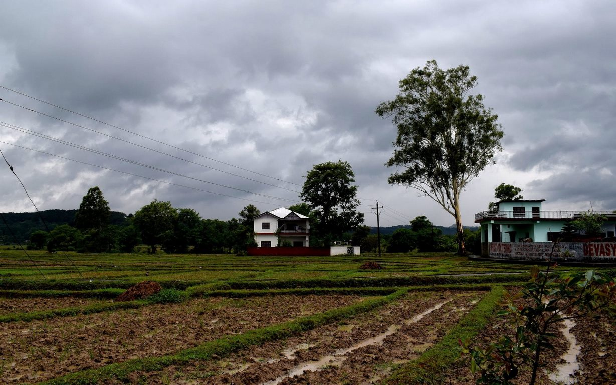 image - Agricultural Tips for the Rainy Season