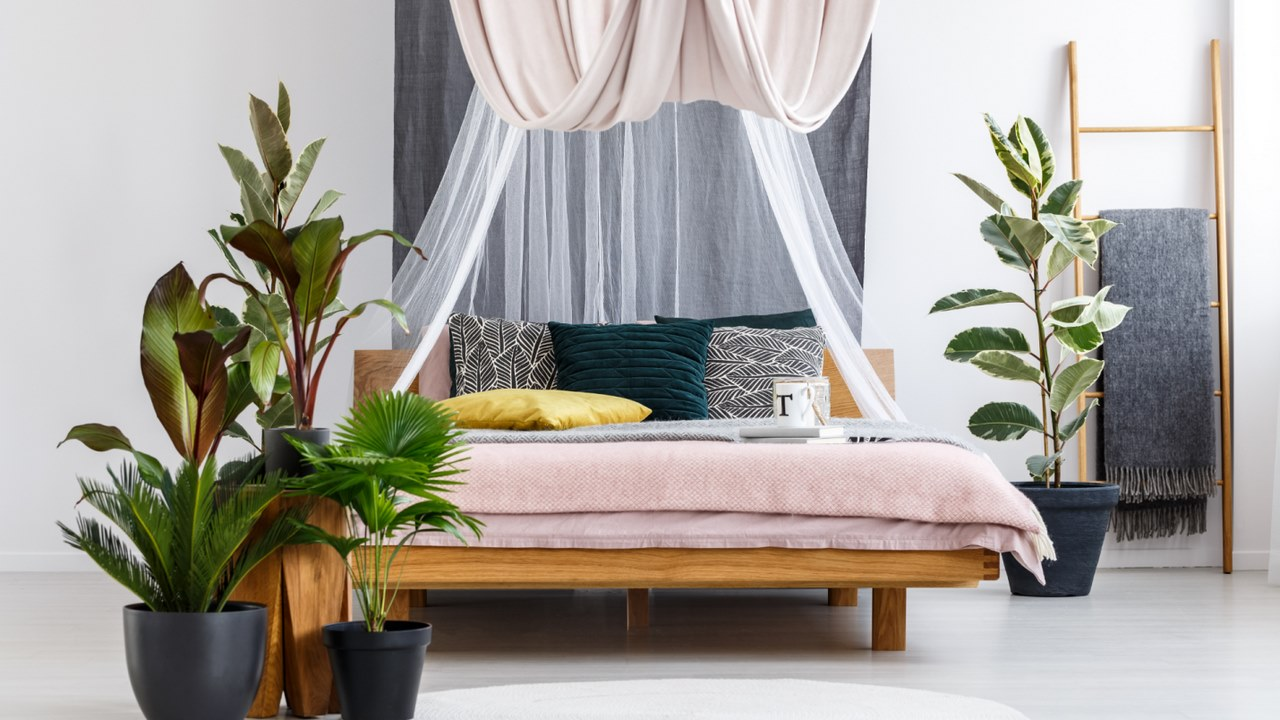 image - A DIY bed canopy can transform any room effortlessly.