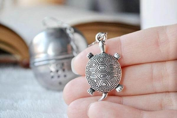 image - What Are the Best Turtle Gifts