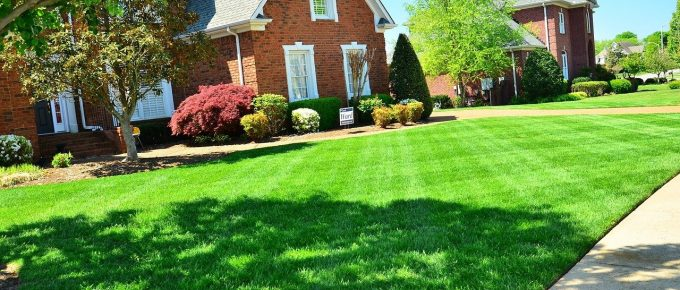 Why You Should Hire Commercial Lawn Maintenance Company?