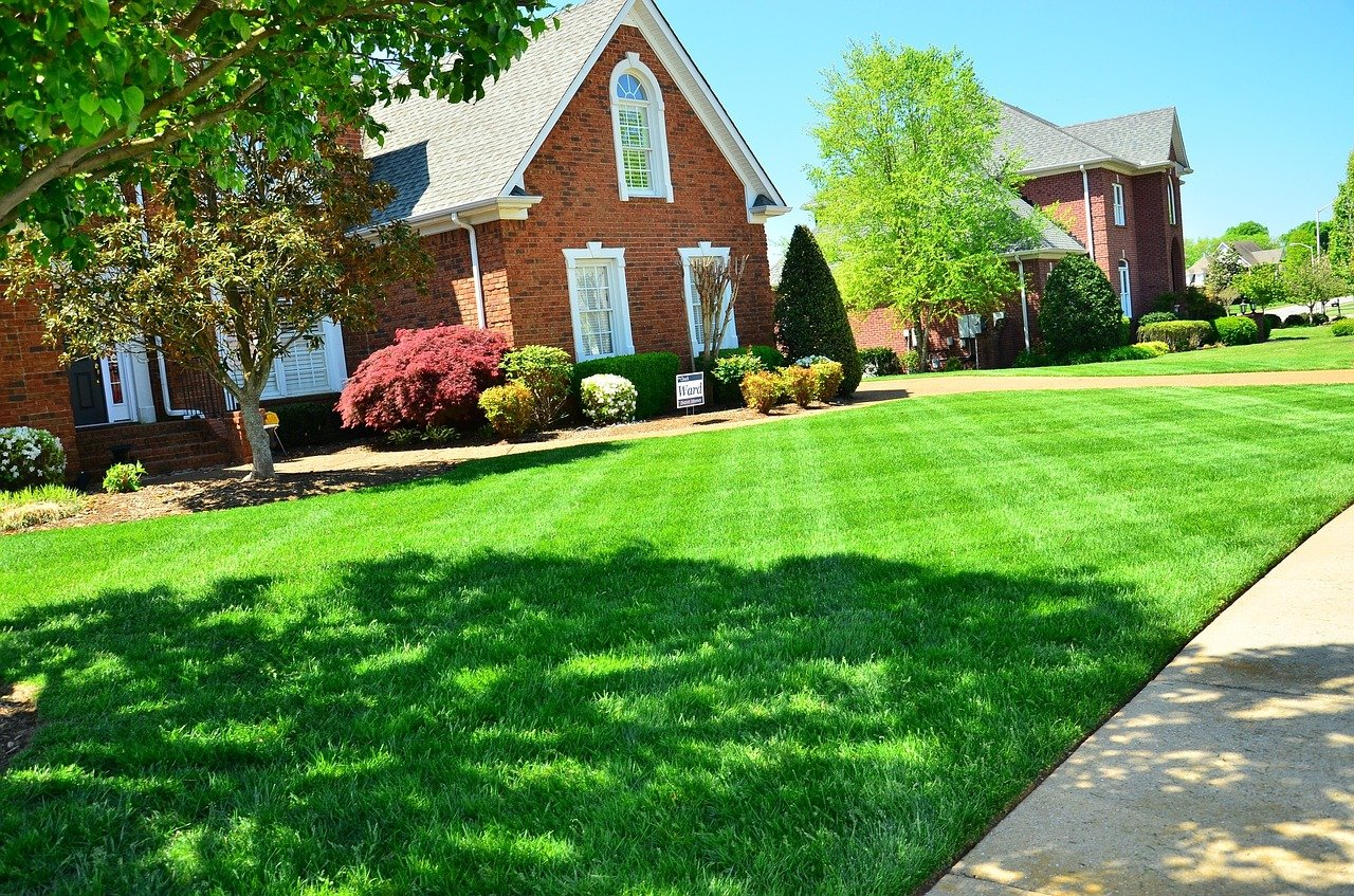 image - Why You Should Hire Commercial Lawn Maintenance Company