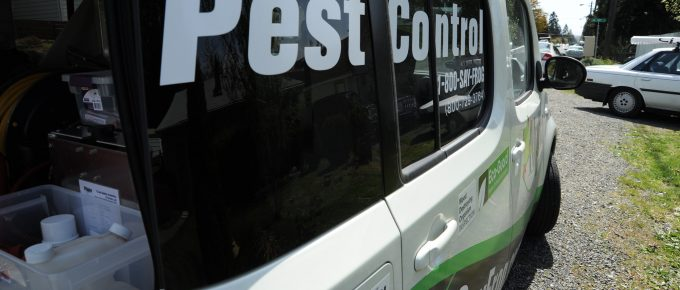 Pest Control Services for Homes and Commercial Premises: Why You Need a Professional