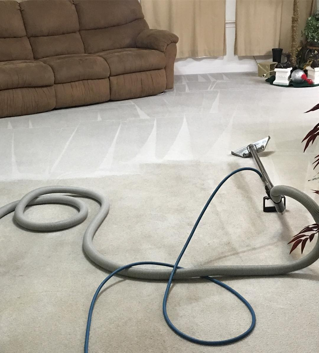 image - How to Select a Carpet Cleaning Service A Guide
