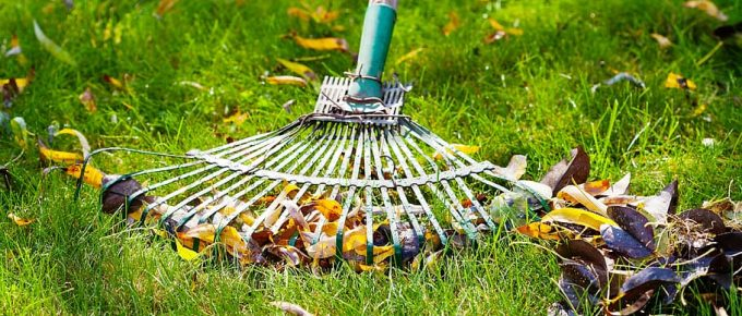 Commercial Lawn Care Tips for Summer & Winter