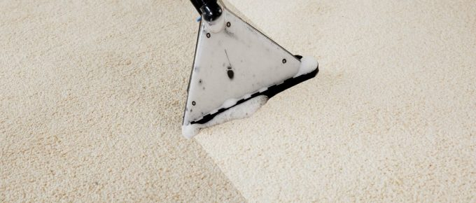 Serious Points to Consider Regarding Carpets When Renovating Your Home