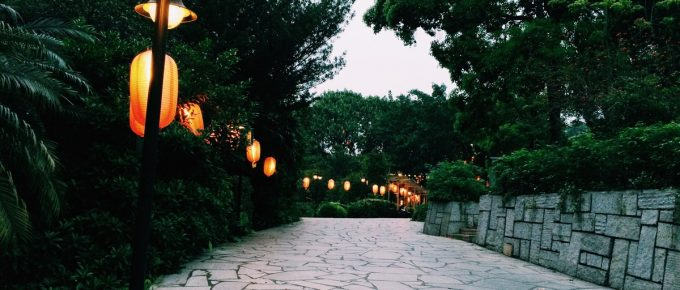 Lighting Options for Your Yard