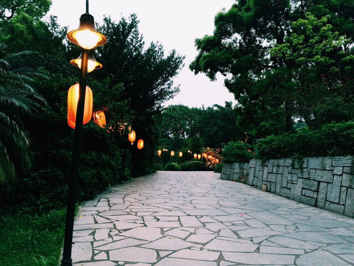 image - Lighting Options for Your Yard