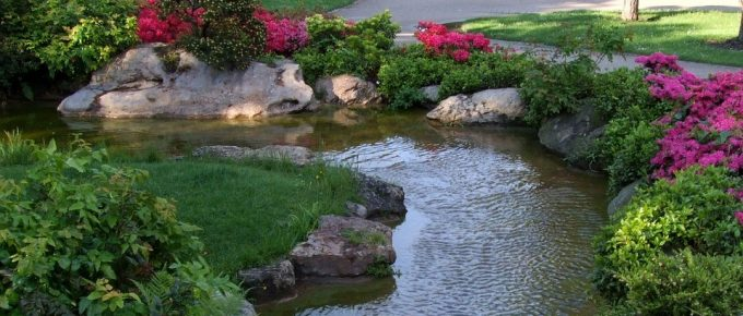 What You Should Know About Water Gardens