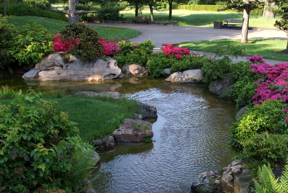 image - What You Should Know About Water Gardens