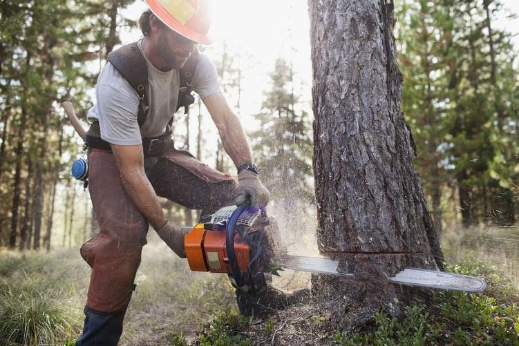 image - Wear Protective Wear When Using the Chainsaw