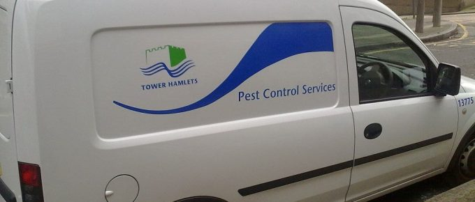 Why You Should Not Invest in A Cheap Pest Control Service