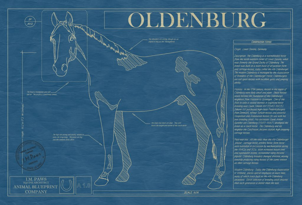 image - oldenburg