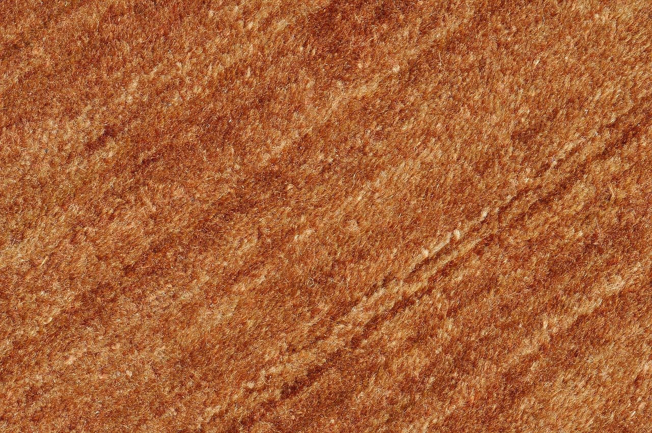 image - When to Repair a Carpet