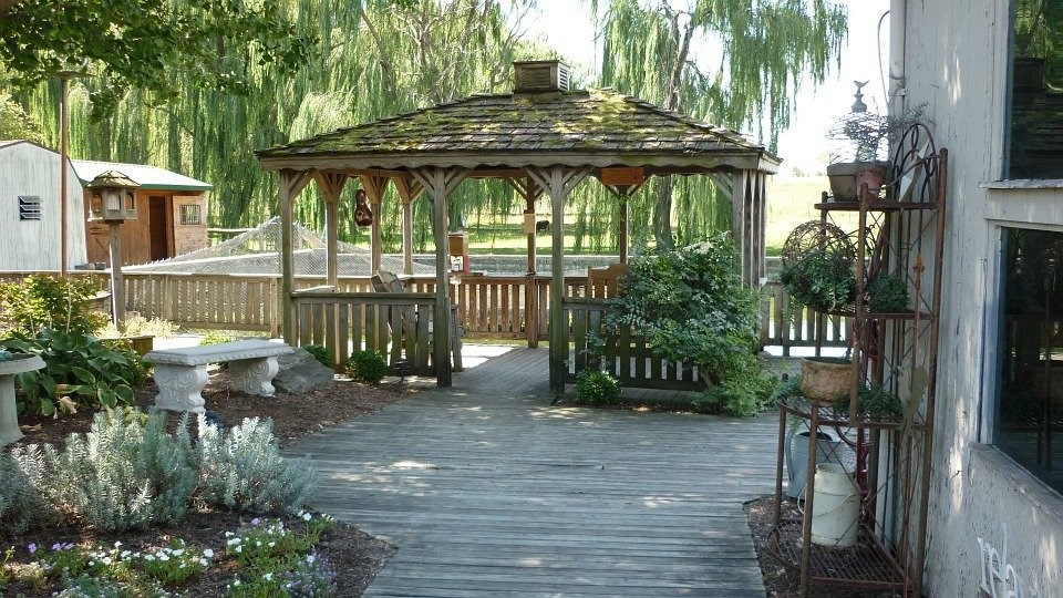 image - Things to Keep in Mind Before Installing A Pergola