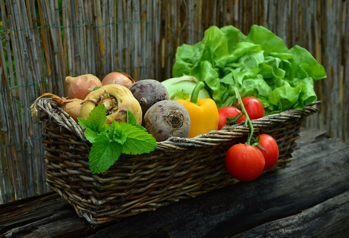 image - How to Start Your Own Vegetable Garden In 7 Easy Steps?