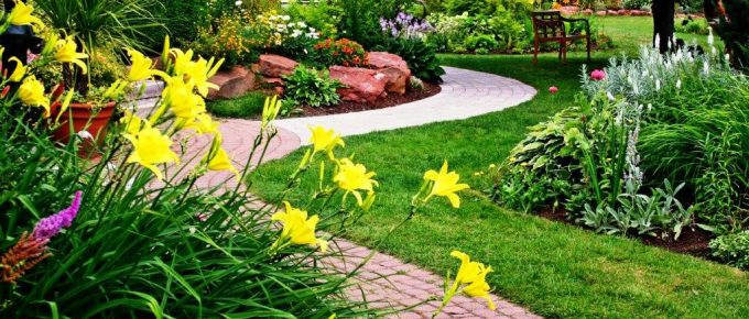 Choosing a Professional Landscape Company: Things to Know
