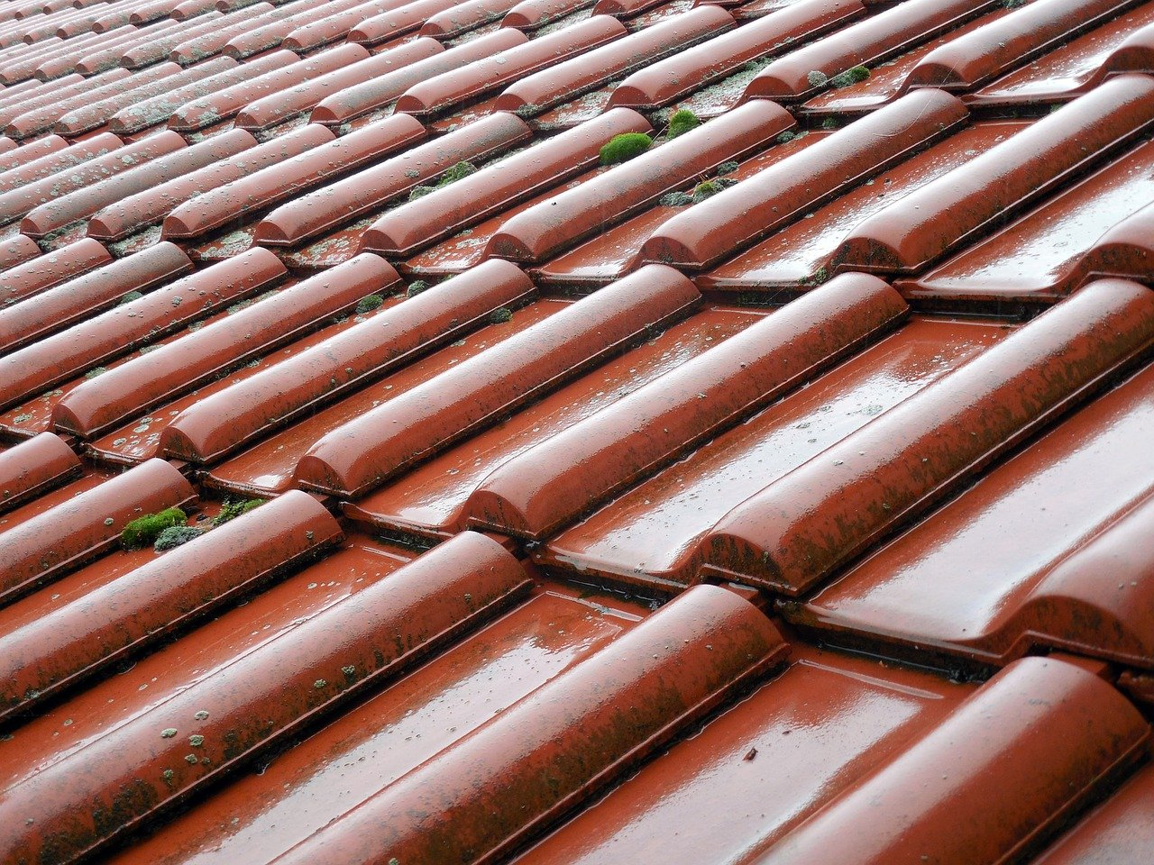 image - The Importance of Professional Roofing Maintenance