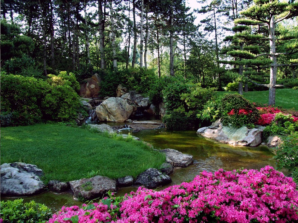 image - Top Ways That Will Help You Have the Ideal Landscape in Your House