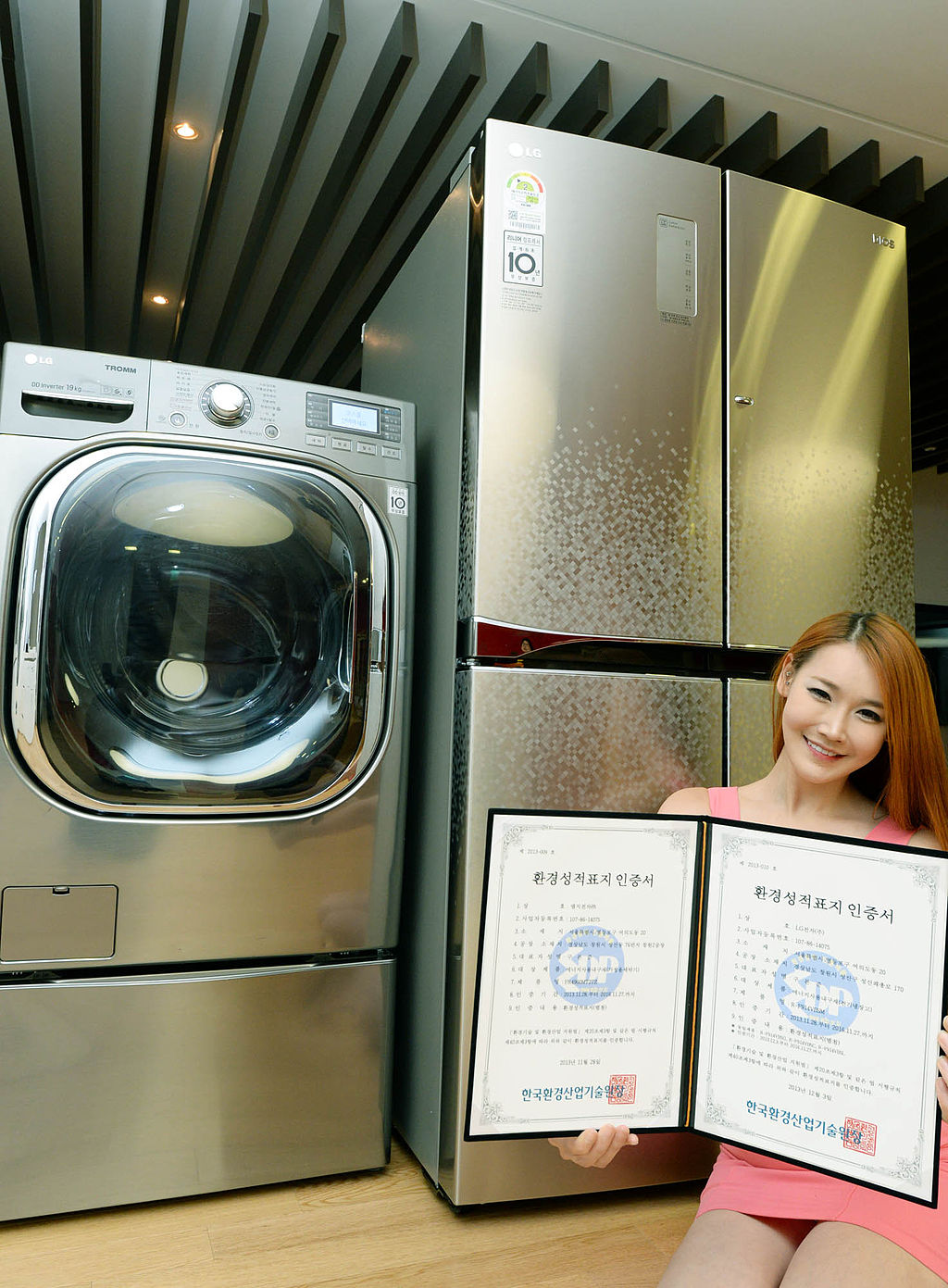 image - Best Appliance Repairs in Ottawa And Gta For Lg Appliances & Parts
