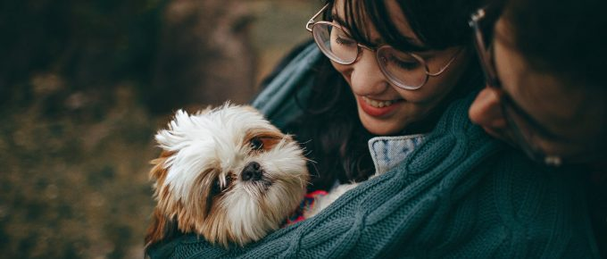 Important Things to Look into to Make Your Dog's Life Even More Fulfilling