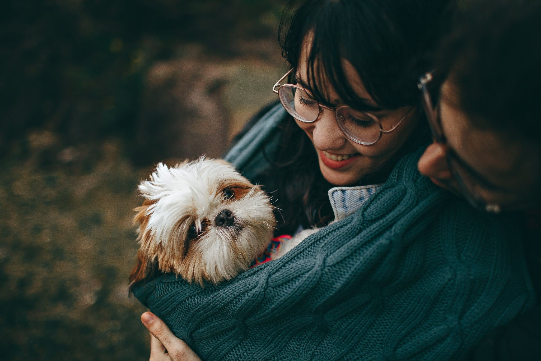 image - Important Things to Look into to Make Your Dog's Life Even More Fulfilling