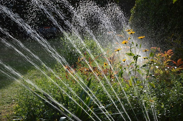 image - Automatic Garden Watering Systems