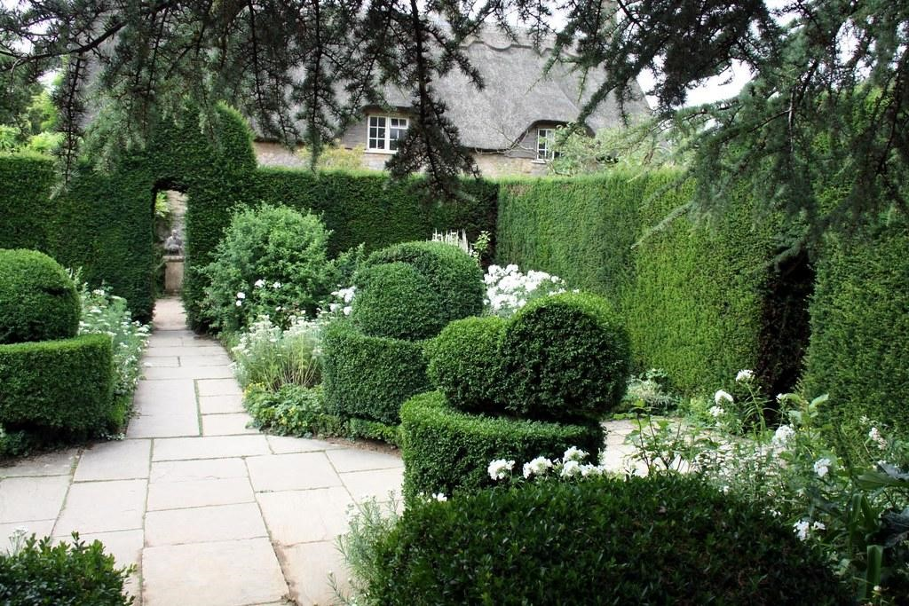image - Cordless Hedge Trimmers