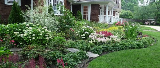 How Much does Basic Landscaping Backyard Cost?