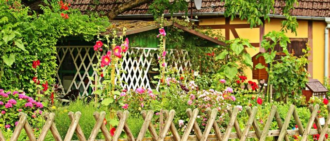 Incorporate Herbs and Aim for A Cottage Garden