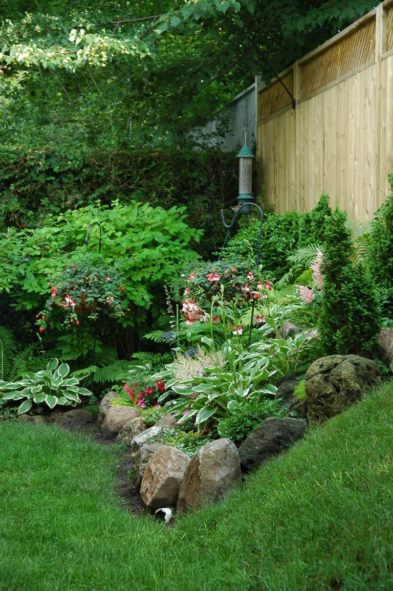 image - Safest Ways to Kill Weeds in Your Garden Without Harming Other Plants