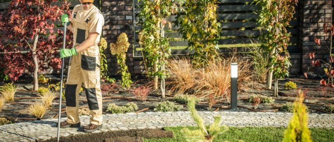 5 Reasons to Hire a Professional Landscaping Company