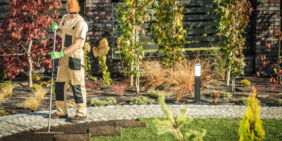 image - 5 Reasons to Hire a Professional Landscaping Company