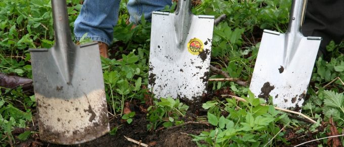 7 Easy Steps to Prepare New Ground for a Garden