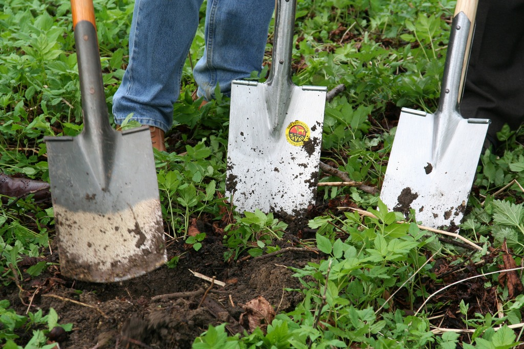 image - 7 Easy Steps to Prepare New Ground for a Garden